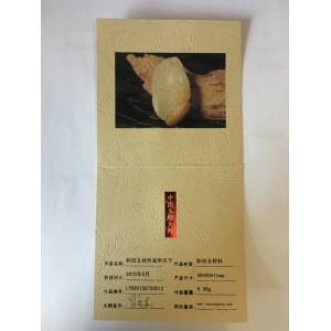 和田白玉籽料挂件富甲天下9.56g